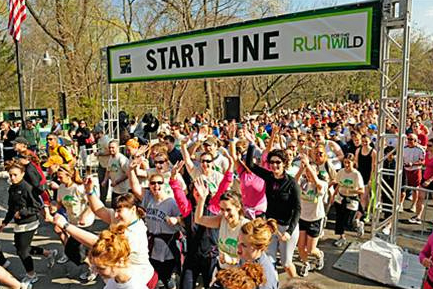How We Boosted Run for the Wild's Fundraising by 85%!