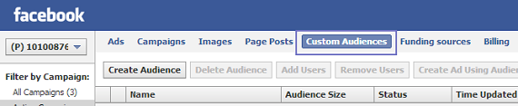 Custom Audience tab in Facebook's Power Editor