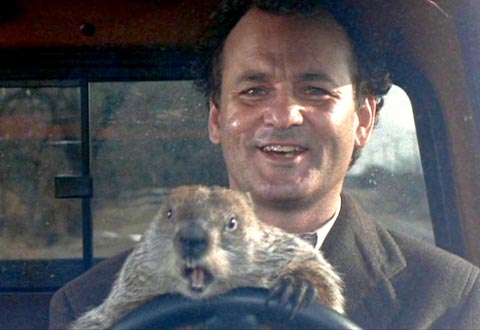What Bill Murray can teach you about email marketing