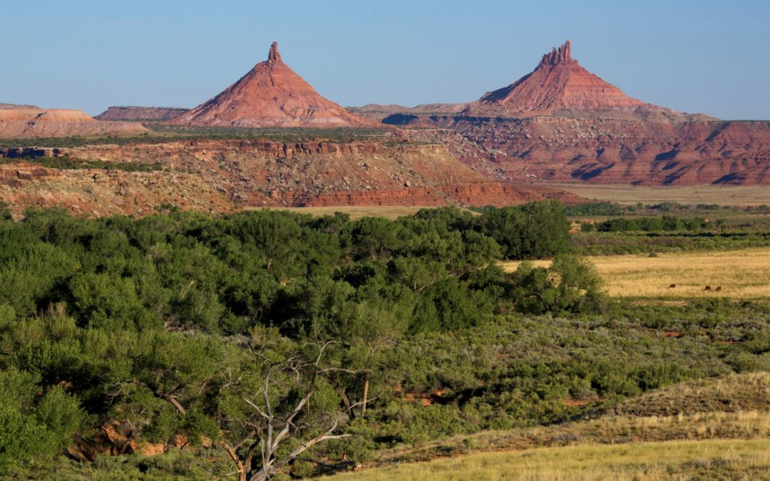 Protecting National Monuments